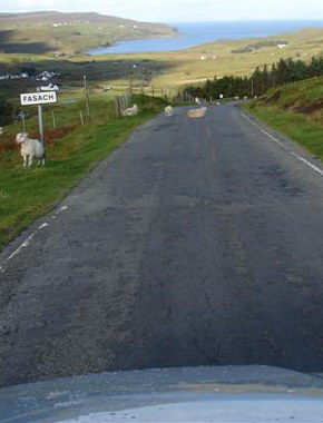 Sheep are among the many obstacles on Scotland's roads.